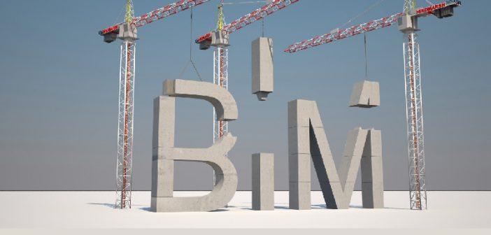 How do we build BIM Capability in the Irish Construction Industry?